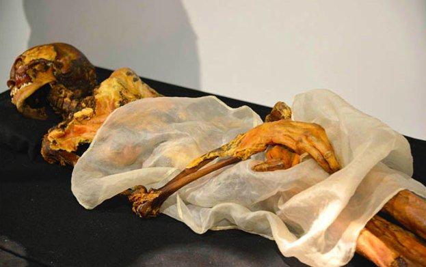 """La """"principessa di Ukok"""", la mummia di una donna della cultura Pazyryk dell'Altai, 500 a.C. (Da Liesowska, 2014)"""