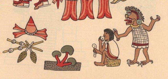 Particolare della pagina 90 del Codice Magliabecchi con raffigurazione di funghi e di un individuo che li sta mangiando