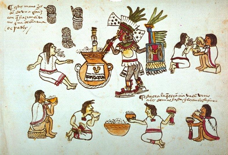 Scena di cerimonia del pulque dipinta nel Codice Magliabecchi (85r). Si notino i tre mazzi di radice di ocpatli in alto a destra.