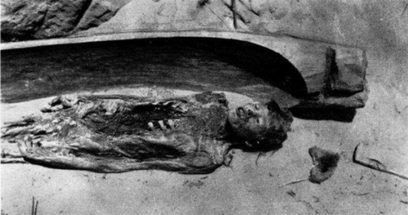 Mummia della tomba 5A. Sopra al corpo erano disposti rametti di efedra. Probabilmente anche l'addome era stato riempito di efedra (da Bergman, 1939, tav. VIc)