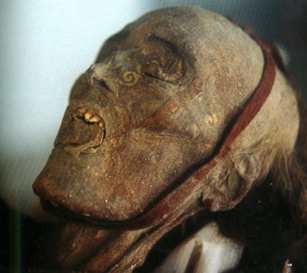 Testa di una mummia femminile da Cherchen. La pelle veniva dipinta prima dell'inumazione (da Barber, 1999, tav. IIIa)