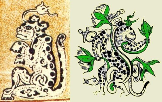 (sx) Giaguaro con in testa un fiore di ninfea (Codice di Dresda, 8(8)); (dx) Giaguaro-Ninfea da una ceramica di data e provenienza ignota (McDonald & Stross, 2012, fig. 4a, p. 82. Il colore verde è stato da me inserito per rendere più evidente le ninfee)