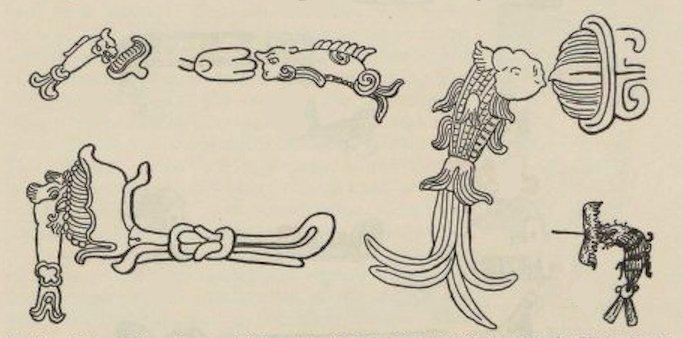 Il motivo del pesce in associazione con il fiore di ninfea nell'iconografia maya (da Spinden, 1913, p. 19, fig. 3)