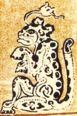 ninfea-maya
