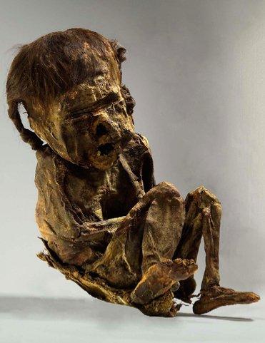 Mummia di un infante peruviano precolombiano in cui non sono stati ritrovati cannabinoidi, cocaina né oppiacei, bensì solamente nicotina (da Musshoff et al., 2009, fig. 2, p. 85)